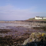 St Bride's bay. Other beaches include Marloes, Broad Haven, Newgale for Surfing, Fresh Water Eas