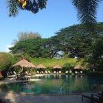 Rasa wing pool, paradise