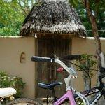 The bikes outside our villa