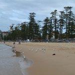 Пляж Мэнли