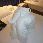 elephant towel lol