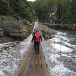 Suspension bridge is part of the short hike to the launching platform