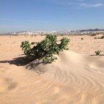 Wie in der Wüste
