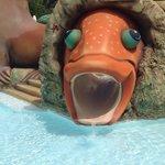 Fishy Slide