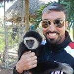 macaco (incluido no pacote)