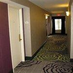 Hilton Garden Springfield MA - 2nd Floor Hallway