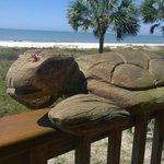 Foto de Turtle Beach Inn