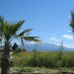 Und immer wieder fällt der Blick zum Etna...