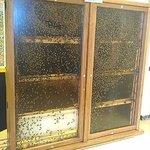 Bee Hive or Hi Density Urban Condo Project.