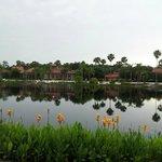 Coronado Springs