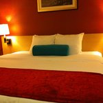 Stylish Accommodations