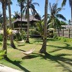 Buddha's Surf Resort Lawn / Garden