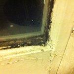 Fenster Schimmel