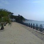 spiaggia privata di sabbia con palme