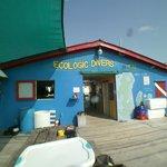 Ecologic Divers Shop