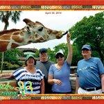 Photo of group during Serengeti Safari while feeding giraffes