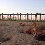Morning at U Bain bridge