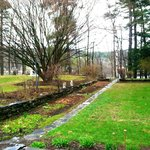 The Backyard/Gardens