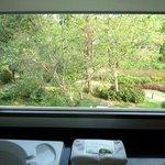 バスルームからの眺め