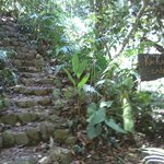 path to the cabinas
