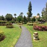 Les jardins de l'hotel