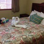 Swan towels on the bed!!!