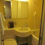 Compact bathroom with bath tub