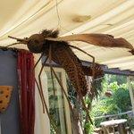 Mosquito hecho de restos vegetales