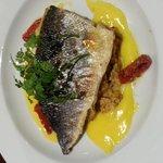 sea bass,  risotto & lemon sauce main dish