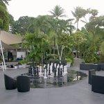 Garden courtyard etc