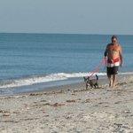 Long walks on beach