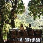 """The """"Tree House"""" at Queens Garden Resort, Saba"""