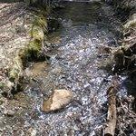 stream at the Inn