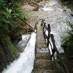 final steps to the waterfall.