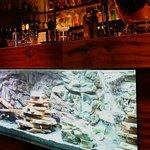 Fishtank-bar