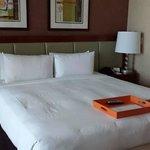 Hermoso Hotel, lujoso y atención excelente!