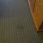 Stains in carpet