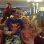 Thursday Night parrot show x