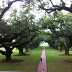 (Oak Alley) Only about a 45 min drive to the Oak Alley Plantation.