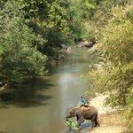 Fluß vom Bambus-Rafting