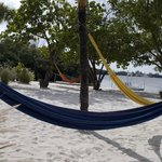 Hammocks near beachfront rooms