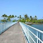 The bridge to Coconut Island