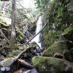 Waterfalls nearby