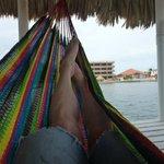 Relaxing in the dock hammock.