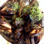 Mussels in a bucket - A must share!