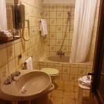 Such a dated bathroom, but completely acceptable because of the history. Even comes with a bidet