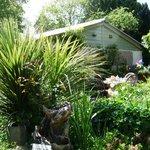 Garden at rear