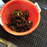 Les homards frais