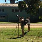 Tree Kangaroo Spotting