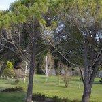 Au milieu du parc, une cabane